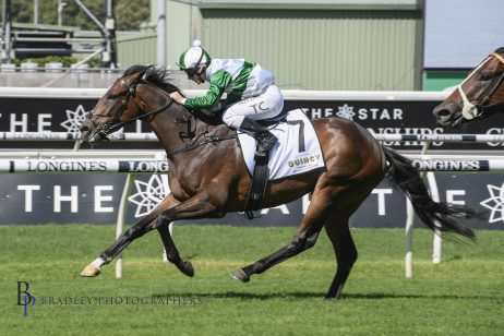 Frank Packer Plate Next For Carbine Club Winner Entente