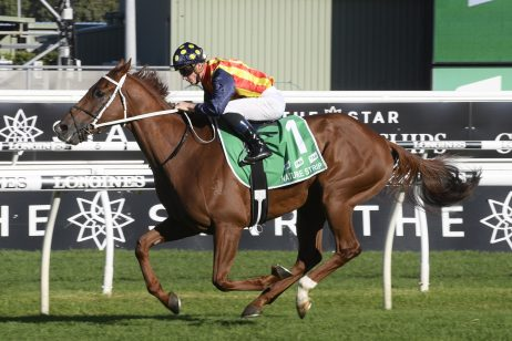 The Everest Calls for Brilliant 2020 TJ Smith Stakes Winner Nature Strip