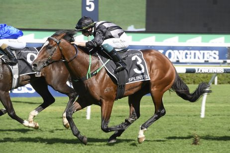 2020 Arrowfield Sprint Results: Splintex Fights off Flit
