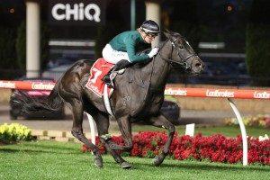 Bella Vella Horse Form (Photo: Ultimate Racing Photos)   Races.com.au