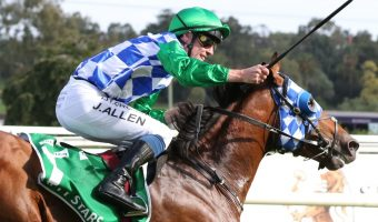 Australian Cup 2021 Field & Betting: Fifty Stars Tipped To Shine Again