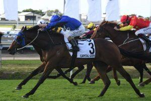 Capital Gain (Photo: Steve Hart). Races.com.au