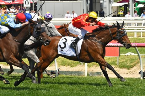 Dane Ripper Stakes 2020 Betting Update: Winter Bride Market Mover