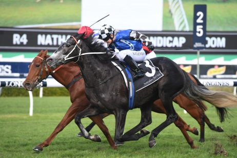 Attention Run Leads 2020 Wyong Gold Cup Field & Betting