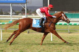 Instant Celebrity Horse Form (Photo: Jenny Barnes) - Races.com.au