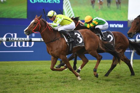 Doomben 10,000 Betting Update 2021: Eduardo Odds-On