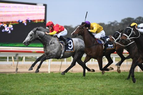 Newcastle Next for Wyong Gold Cup Winner Paths Of Glory