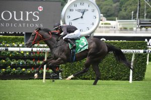 Fasika Horse Form (Photo: Steve Hart) | Races.com.au