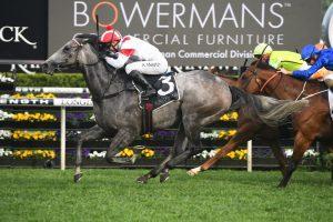 Classique Legend Horse Form (Photo: Steve Hart)   Races.com.au