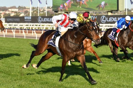 Mile Over The Everest For Gilgai Stakes Winner Zoutori