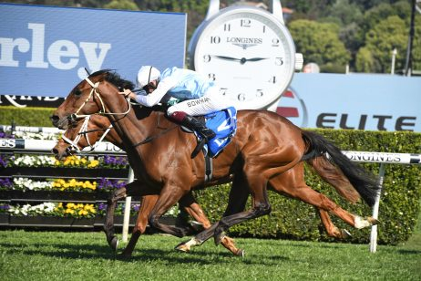 2020 Spring Champion Stakes Nominations Feature Flight Stakes Winner Montefilia