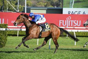 Libertini Horse Form (Photo: Steve Hart) | Races.com.au