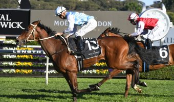Caulfield Cup 2021 Tips & Exotic Selections