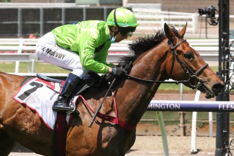 Geelong Cup Winner Tralee Rose Firms in 2021 Melbourne Cup Betting