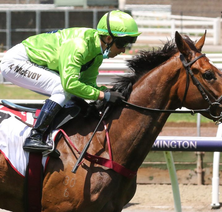 2021 Adelaide Cup Results: Good Idea Wins In Upset
