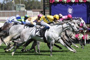 Berdibek Horse Form (Photo: Ultimate Racing Photos)   Races.com.au