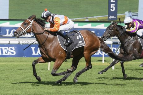 2020 Villiers Stakes Field & Betting Update