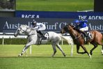 Greysful Glamour Wins Villiers Stakes and 2021 Doncaster Mile Ballot Exemption