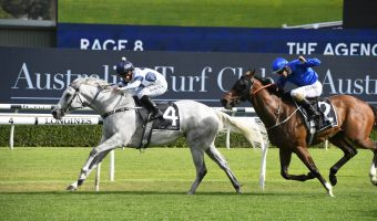 2021 Hawkesbury Gold Cup Field & Betting: Royal Celebration Narrow Favourite