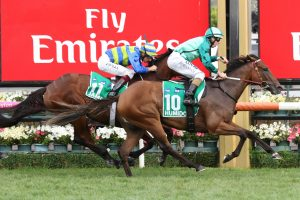 Wide 2017 Caulfield Cup Barrier Draw For Bonneval