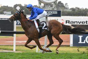Oliver Wins Record 5th Aurie's Star on Home Of The Brave