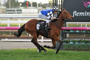 2019 Brisbane Cup Results: Sixties Groove Scores Deserving Win