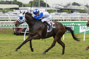 2019 Queensland Derby Results: Mr Quickie Wins for Punters