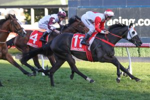 Mystic Journey Wins PB Lawrence Stakes 2019: Cox Plate Campaign On Track