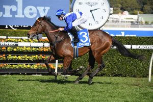 Everest Could Be on the Cards for Silver Shadow Winner Libertini
