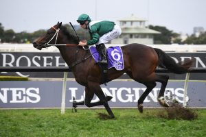 San Domenico Stakes Winner Exceedance New Golden Rose Stakes Favourite