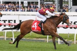 Streets Of Avalon Could Be Headed to Dubai Following Moonga Stakes Win