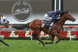 Melbourne Cup Next on the List for Moonee Valley Cup Winner Hunting Horn
