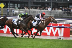 Dalasan Caps Off Spring with Dazzling Carbine Club Stakes Win