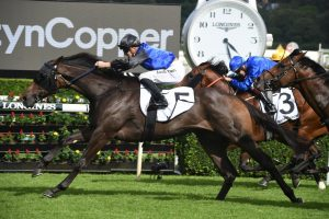 The Actuary Wins 2020 The Phoenix For Gollan