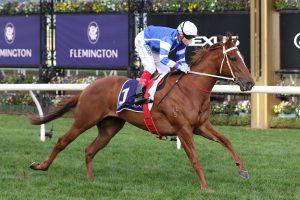 Gytrash Horse Form (Photo: Ultimate Racing Photos) | HorseRacing.com.au