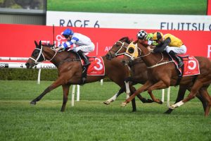George Main Stakes Results: Kolding is back