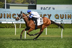 2020 Hill Stakes Winner Kolding Makes it Two in a Row Ahead of the Cox Plate