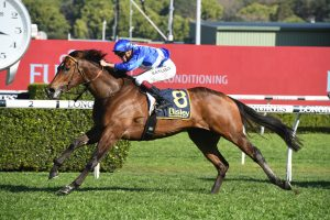 Libertini Enters Everest Calculations with Comfortable Premiere Stakes Win