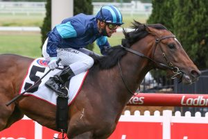 Melham Claims Second Red Anchor Stakes Aboard Impressive 3YO Portland Sky
