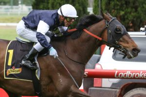 Mackinnon Stakes Up Next for 2020 Crystal Mile Winner Homesman