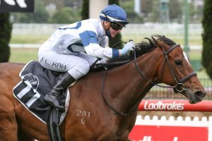 2020 Moonee Valley Gold Cup Winner Miami Bound Enters Melbourne Cup Calculations