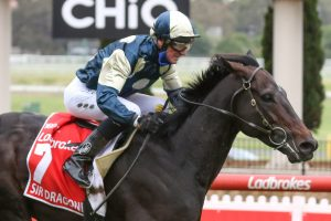 Cox Plate Winner Sir Dragonet Heads 2021 Tancred Stakes Markets
