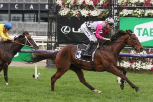 2020 Melbourne Cup: Barrier 7 Gives Craig Williams Plenty of Options Aboard Surprise Baby