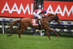 2020 Melbourne Cup Tips: Warning A Chance at Odds