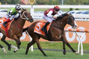 Streets Of Avalon Forgotten Star in 2021 Futurity Stakes Field & Odds