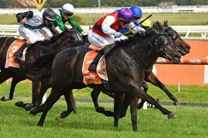 2021 Blue Diamond Stakes Winner Is Artorius