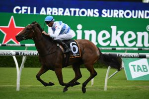 Forbidden Love Fancied to Win Coolmore Classic 2021