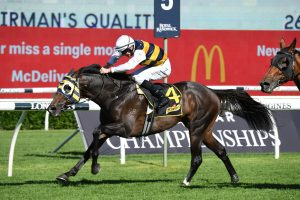 Sydney Cup Up Next for Chairman's Quality Winner Quick Thinker