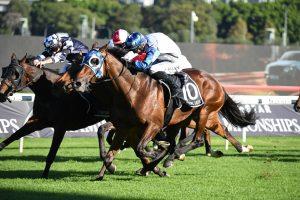 Queensland Derby 2021 Winner Is Kukeracha For Waller