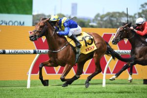 2021 Sydney Cup Odds Firm on Favorite Moon